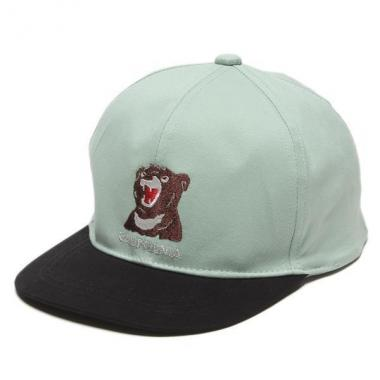 Bear embroidered baseball cap